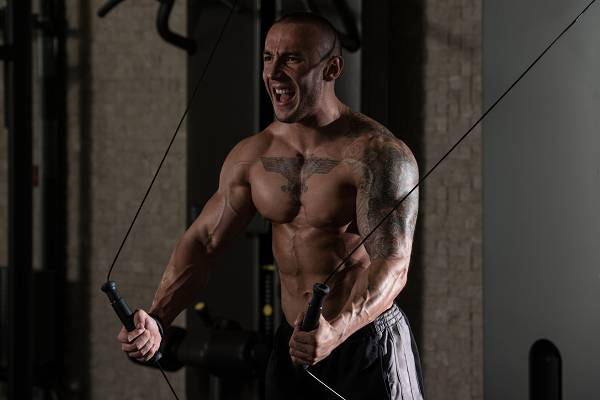 Maximaler Muskelaufbau: 3 Mechanismen zum Optimieren
