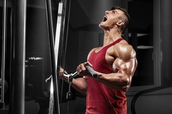 Maximaler Muskelaufbau: Mechanismus Nr. 2 - Metabolischer Stress
