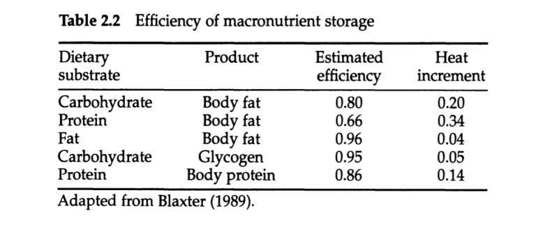 """Speicherungs-""""Effizienz"""" der Makronährstoffe"""