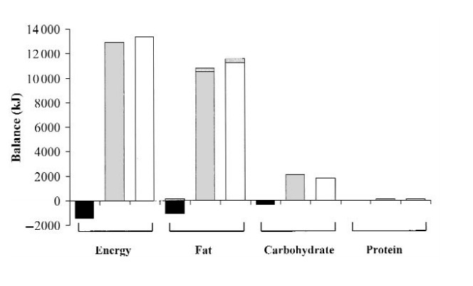 Fettspeicherung aus Kohlenhydraten beim Menschen