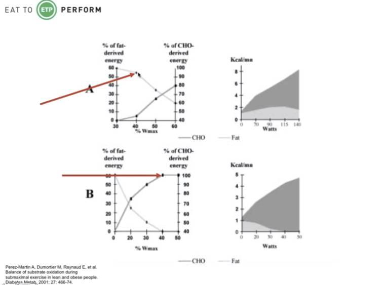 Insulinresistente Personen sind stärker auf den Kohlenhydratstoffwechsel angewiesen, als schlanke & gesunde Individuen