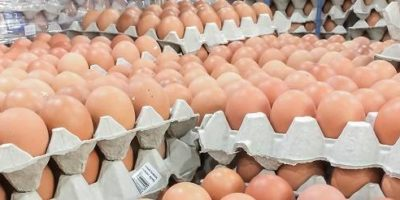 Gute Proteinquellen – Woran erkennt man sie? – Teil 1: Die Proteinverdaulichkeit