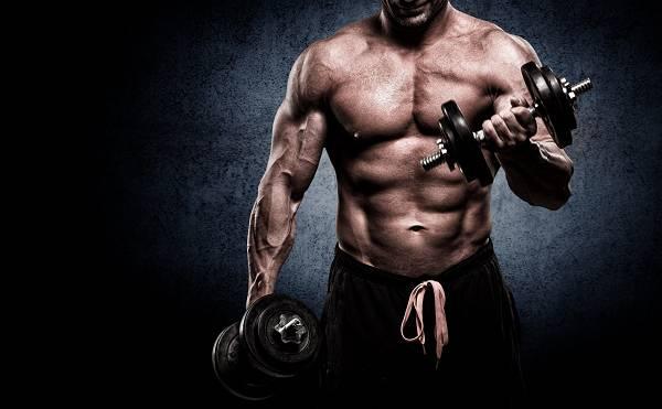 Wie man Muskeln aufbaut und gleichzeitig Fett verliert