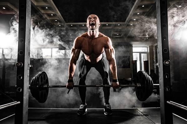 Wie man Muskeln aufbaut: Ein wissenschaftlich basierter Guide - Teil 1: Training