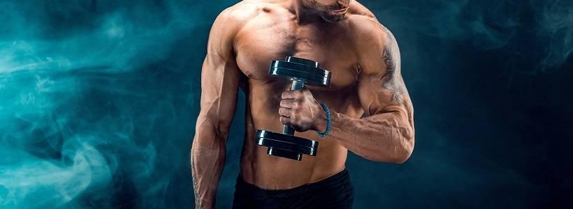 Positive Muskelproteinbilanz erreichen: Krafttraining & Nahrungsprotein