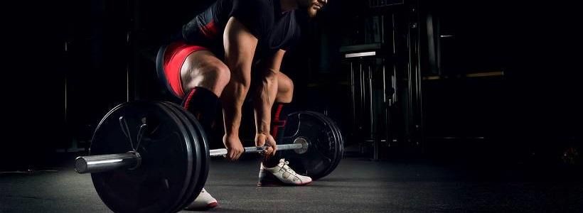 Kohlenhydrate / Glykogen als Energiequelle im Kraftsport