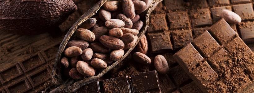 Kakao und Endothelfunktion: Kann Schokolade die Gesundheit fördern?