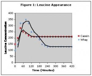 Das Ergebnis der Boirie-Studie: Die Aminosäuren aus Whey und Casein (hier am Beispiel Leucin) erscheinen zeitgleich im Blutkreislauf, entfalten jedoch eine unterschiedliche Wirkung auf die Aminosäurekonzentration (in Spitzenkonzentration und Dauer)