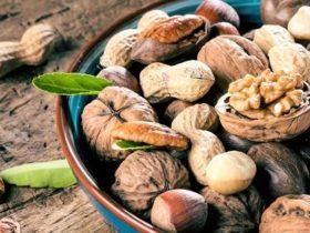 Nüsse & Körpergewicht | Fragen & Antworten