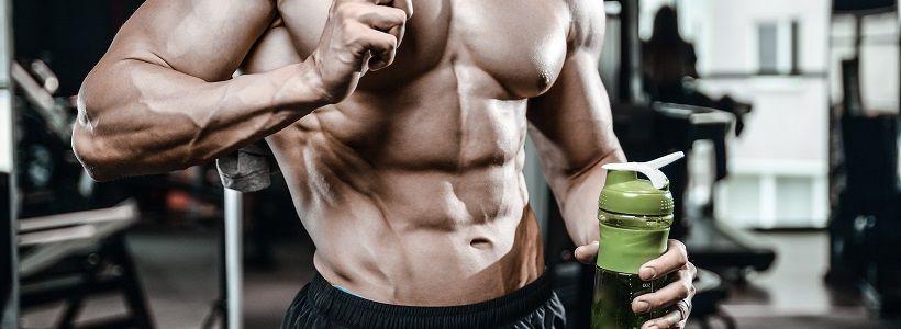Hormonausschüttung nach dem Training & Muskelaufbau