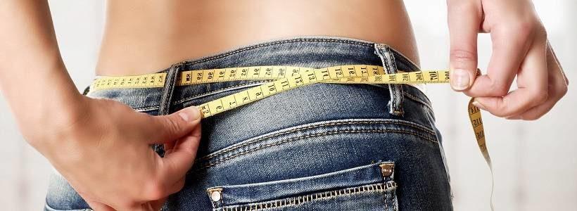 The Zone Diet Guide: Überlick, (wissenschaftlicher) Hintergrund & Vorteile