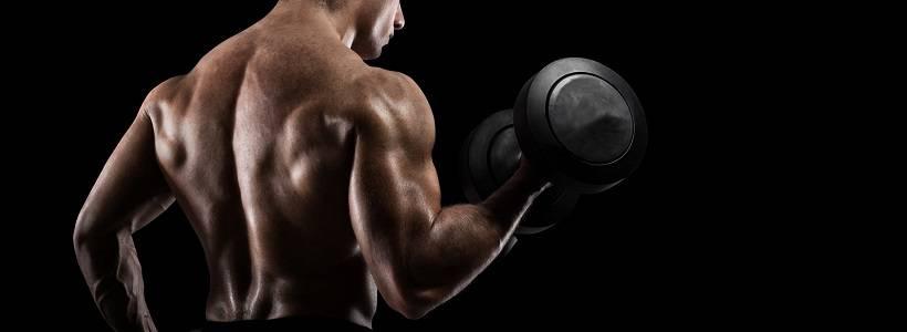 Mathe für deine Muskeln: Power Laws & Parabel stressiger Einflüsse