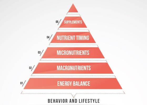 Welche Faktoren haben den größten Einfluss, wenn es darum geht Muskeln aufzubauen, Fett zu verlieren und stark zu werden?