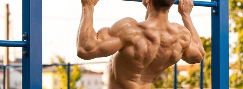 Optimale Verteilung des Trainingsvolumens für Muskelaufbau