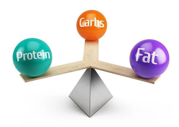Die Energiebilanzgleichung: Ein gültiges Konzept zur Steuerung der Körperkomposition
