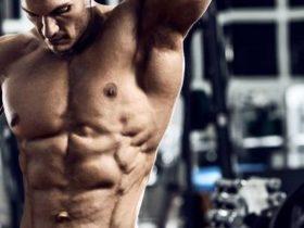 Verbrennt Muskulatur Fett und steigert Muskelaufbau die Stoffwechselrate?