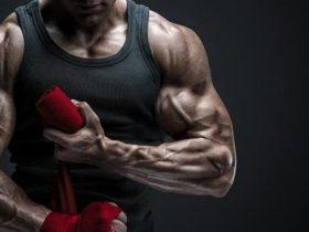 Muskelaufbau Guide: Meilensteine des Trainingsvolumens