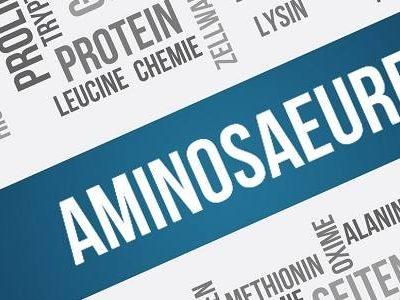 Gute Proteinquellen erkennen – Teil 4: Das Aminosäureprofil I