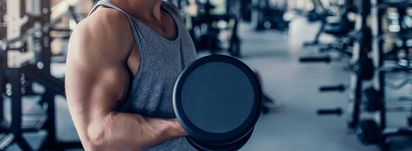 Kraftzuwächse: Wo kommen sie her? Muskelaktivierung > Hypertrophie > Ausgangskraft | Studien Review