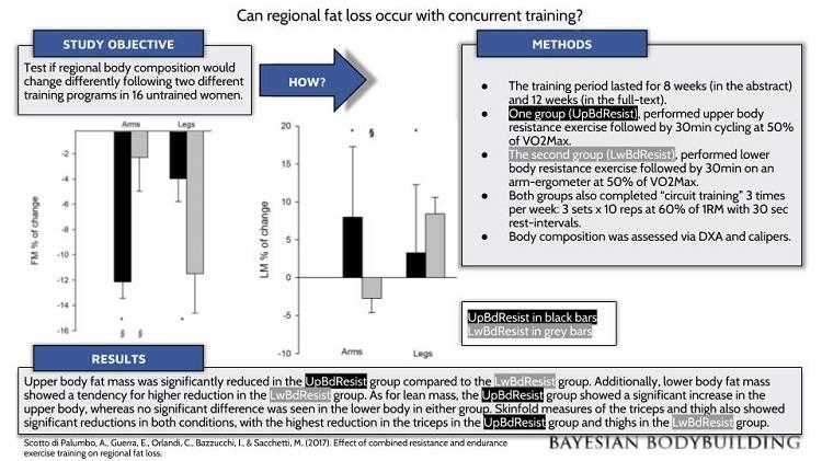 Gibt es so etwas wie eine lokale Fettverbrennung? Die Untersuchung von Scotto di Palumbo et al. liefert wertvolle Anhaltspunkte. (Bildquelle: BayesianBodybuilding.com)