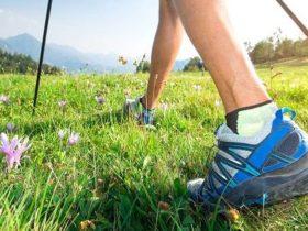 Training für die Beine spielt wichtige Rolle bei der Gesundheit von Hirn & Nervensystem