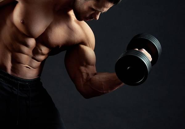 Muskelaufbau Trainingsplan für zu Hause (mit minimalem Equipment) für Anfänger