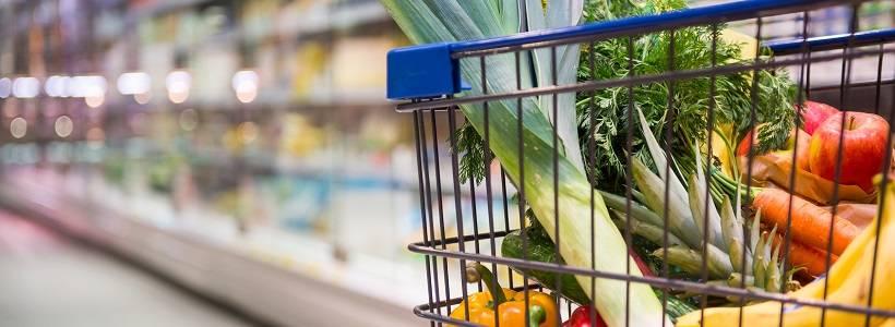 Erstelle deinen eigenen Ernährungsplan, der dich zum Erfolg bringt