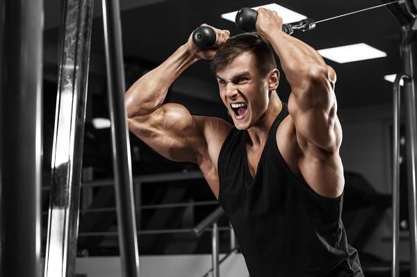 Genetisches Limit: Wie viel Muskeln kannst du aufbauen?