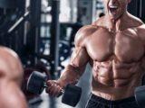 Western Diet Vs. Keto Diet: Besserer Muskelaufbau mit 12-wöchiger Keto-Ernährung? | Studien Review