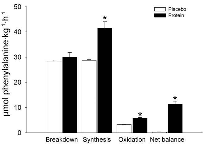 Casein Protein vor dem Schlafengehen: Ist es wirklich notwendig?
