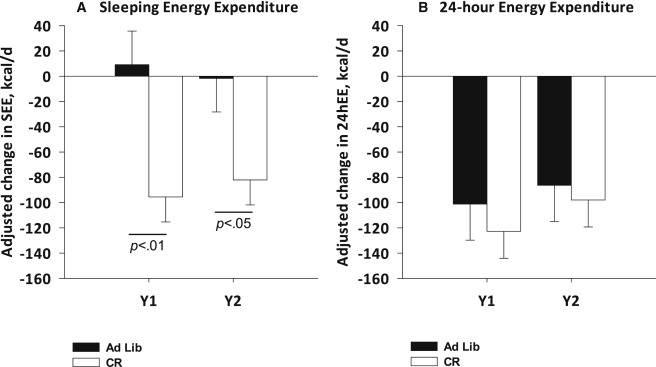 Kalorienrestriktion & Langlebigkeit beim Menschen