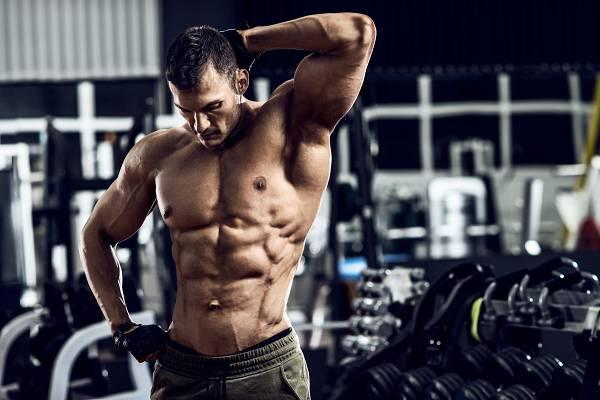 Bauchmuskeltraining für optimalen Muskelaufbau | Übungen, Frequenz & Periodisierung