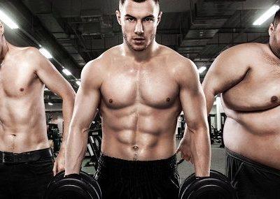 Körpertypen (Endomorph, Ektomorph, Mesomorph) - Und was dies für deine Ernährung & dein Training bedeutet