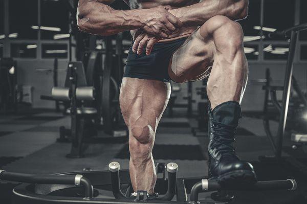 Heiß begehrt, aber selten erreicht: Die Wadenmuskulatur zählt vermutlich zu den widerspensigsten Muskelpartien, wenn es darum geht Hypertrophie zu erreichen, doch mit den richtigen Strategien kannst auch du sie zum Wachsen bringen.