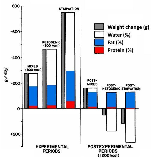 Durchschnittliche tägliche Rate und Komposition der Gewichtsveränderung.
